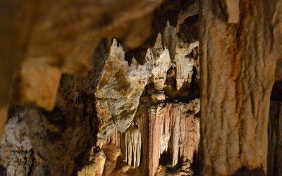 Entre géologie et grotte ornée : notre visite des grottes de Limousis et du Pech Merle