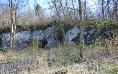 Entre homme-lion, mammouths et grottes habitées !