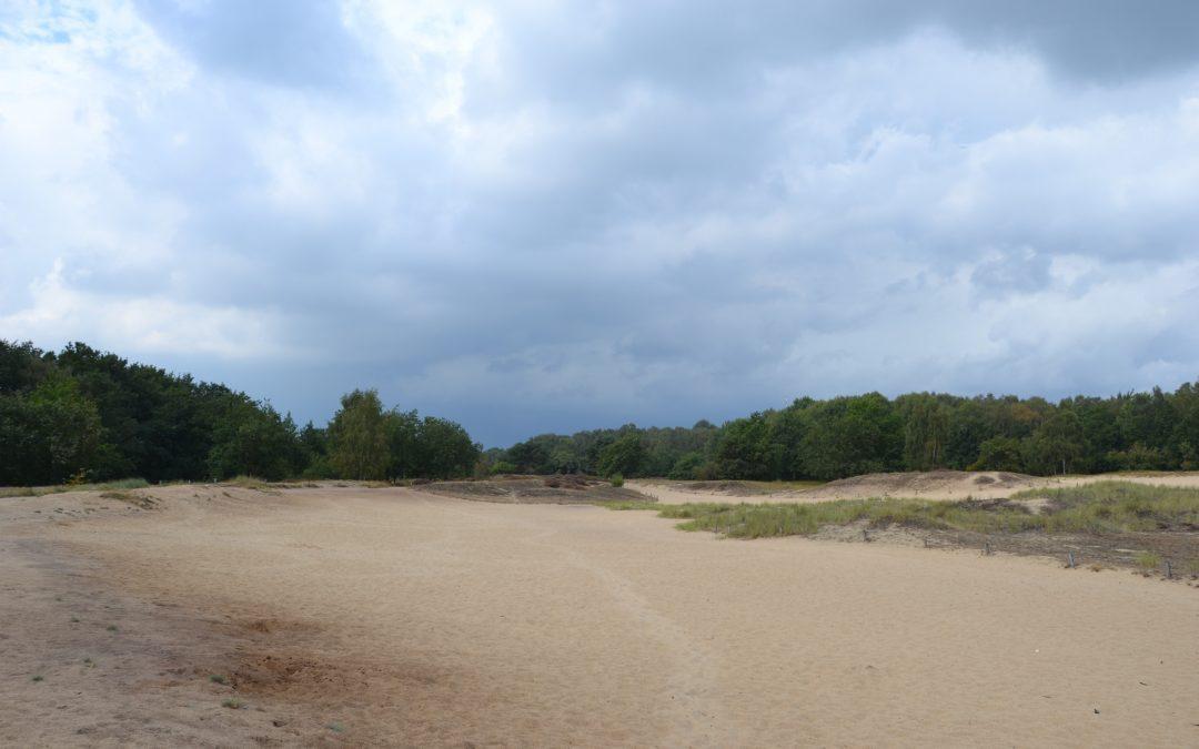 Boberger Dünen : des dunes en plein Hambourg