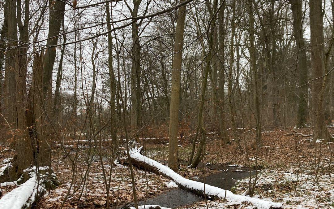 L'Alstertal, là où l'Alster n'est qu'une petite rivière