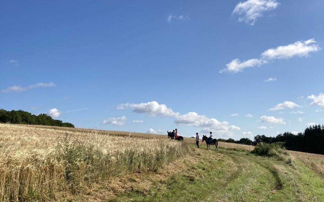 A dos d'âne vers le château de Corbelin